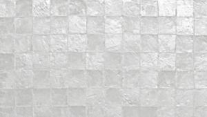 SHELLZ feature wall.